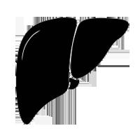 liver surgeries in suratliver surgeries in surat